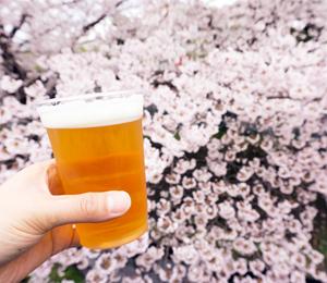 花見とビール